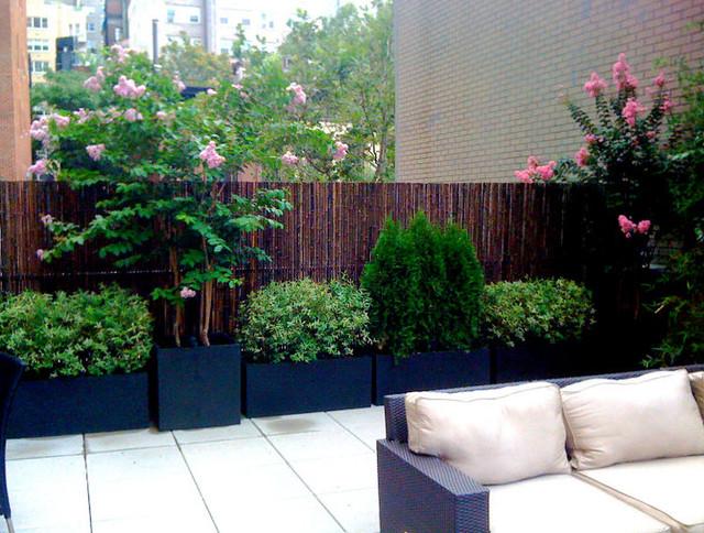 pátio moderna por Amber Freda Home & Garden Design