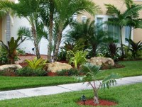 Front Yard Landscaping Tropical Ideas - Home Decorating Ideas