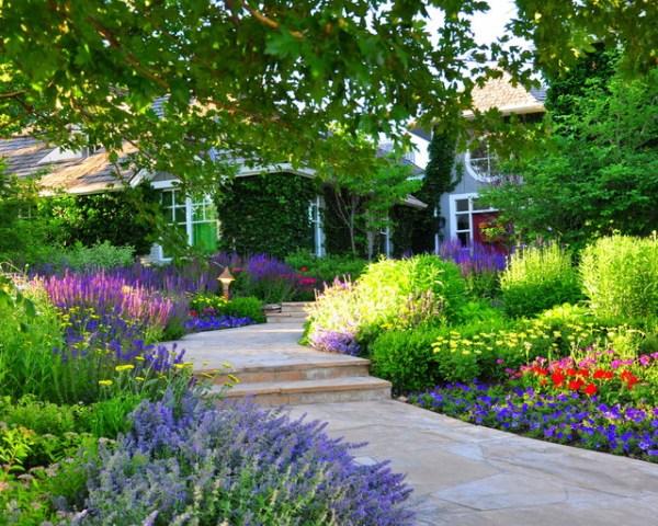 front yard renovation - traditional