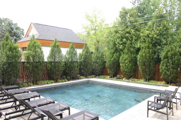 pool & privacy screen
