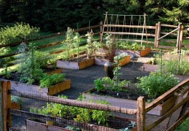 Deer Proof Gardening Home Design Ideas Pictures Houzz