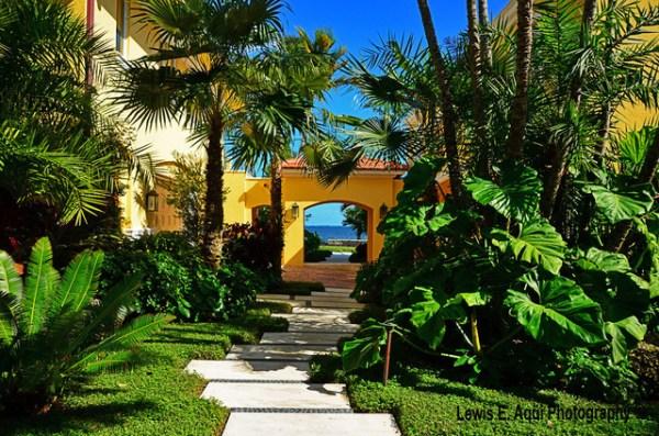 serenity bay - tropical