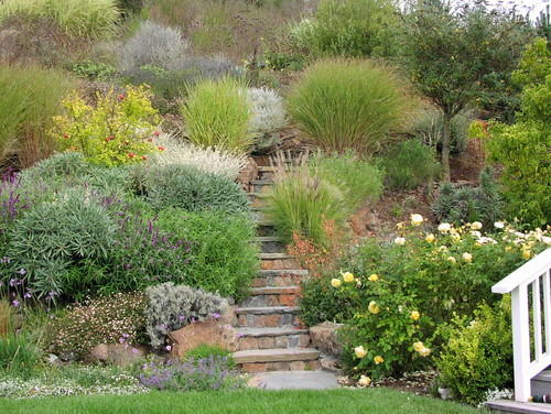 landscaping ideas hillside