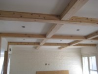 Drywall to Woodland - Unfinished Ceiling Decoration ...