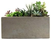 Rectangular Concrete Planter - Modern - Indoor Pots And ...