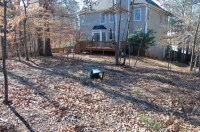 Assistance/Ideas for Wooded Backyard