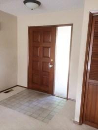 Light or dark flooring with dark doors and trim?