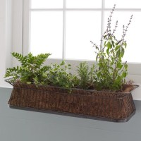 Window Box - Contemporary - Indoor Pots And Planters - by ...