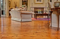 Wood Floor - Traditional - Living Room - other metro - by ...