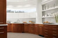 Contemporary Kitchen Cabinet + Drawer Hardware By Rocky ...