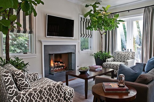 Say Goodbye To Artificial Plants And Put A Fig Tree In