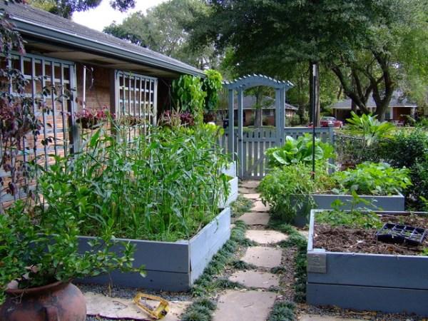 informal garden in spring branch