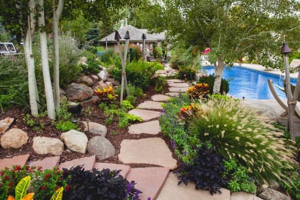 backyard dream - tropical landscape