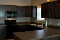 Charcoal Stained Cabinets - Traditional - Kitchen - other ...