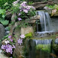Purple Living Rooms Houzz Gallery Of Room Designs Water Features
