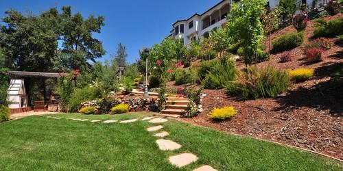premiere lawn service backyard