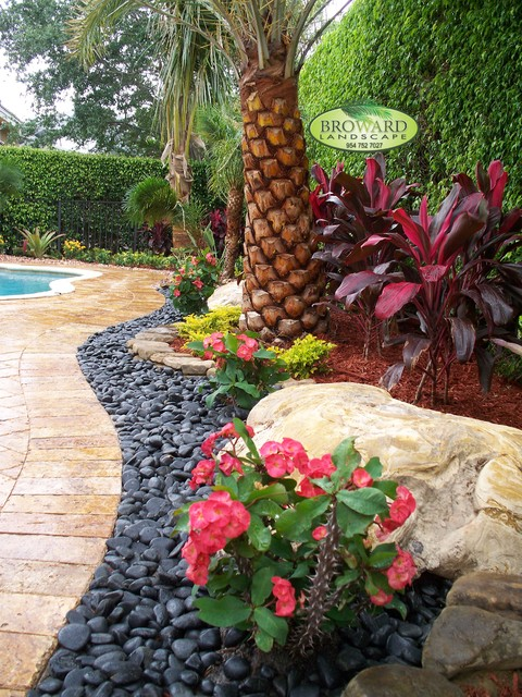 front yard landscape - tropical