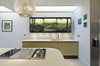 Andrea & John's kitchen contemporary-kitchen