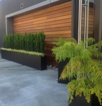 Wood accent wall.... - Contemporary - Patio - other metro ...