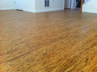 Cork Floor - Contemporary - Hardwood Flooring - denver