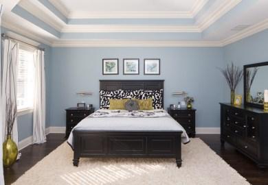 Bedroom Ceiling Light Home Design Photos Houzz