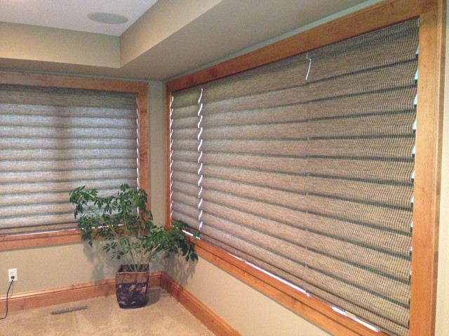 Hunter Douglas Vignette Roman Shades  Traditional