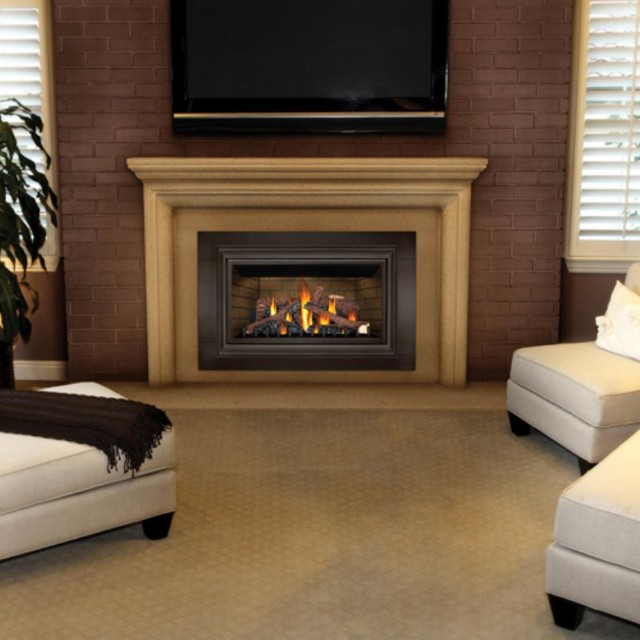 Gas Fireplace Indoor Napoleon Basic Direct Vent Gas Fireplace Insert Multicolor