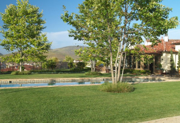 rancho santa fe residence - mediterranean