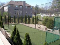 Backyard Batting Cage - Traditional - Landscape - st louis ...