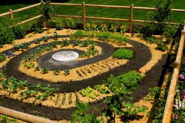 Zen Vegetable Garden… To Die For!