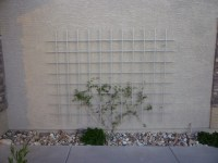 Wall Mounted Trellis