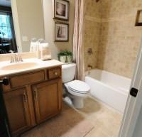Big Canoe Model Homes - Contemporary - Bathroom - atlanta ...