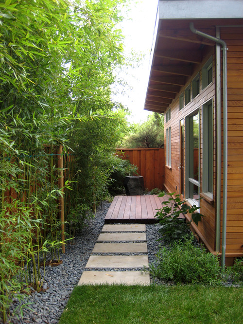 bamboo landscaping guide design
