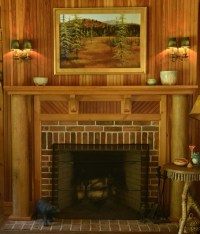 Adirondack Style - Eclectic - Living Room - other metro ...