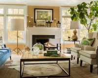 Transitional Living Room Home Design Ideas, Pictures ...
