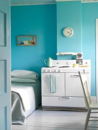 Robin's Egg Blue Home Design Ideas, Pictures, Remodel and ...