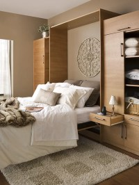 Modern Murphy Bed Ideas, Pictures, Remodel and Decor