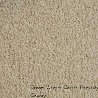 heavenly carpet