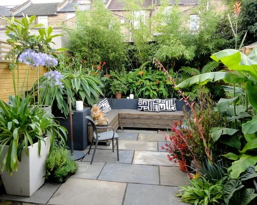 Best Jungle Garden Design Ideas & Remodel Pictures Houzz