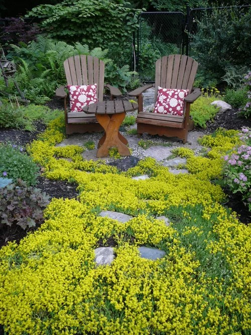 Ground Cover Houzz