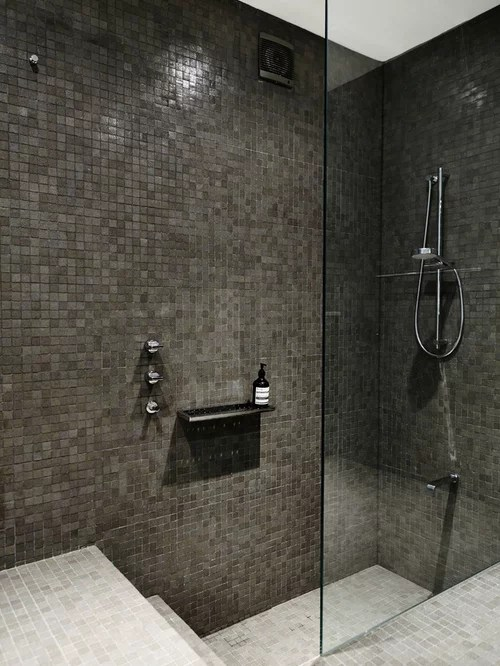 StepDown Shower Home Design Ideas Pictures Remodel and Decor