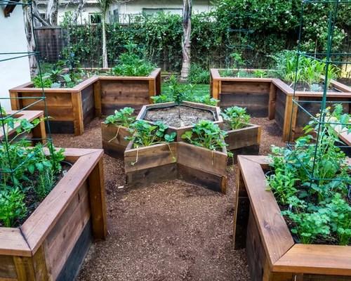 Raised Vegetable Garden Layout Houzz