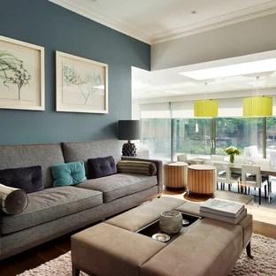 Blue Grey Walls Living Room Ideas Photos Houzz