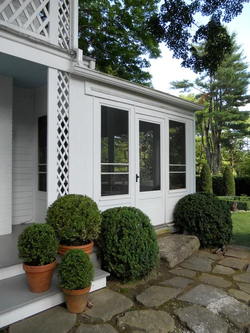 boxwood shrub home design