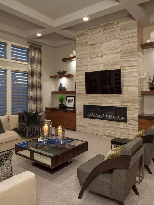 Best Contemporary Living Room Design Ideas & Remodel Pictures Houzz