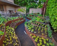 Best Terrace Vegetable Garden Design Ideas & Remodel ...
