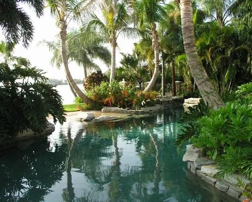 tropical tampa landscape ideas