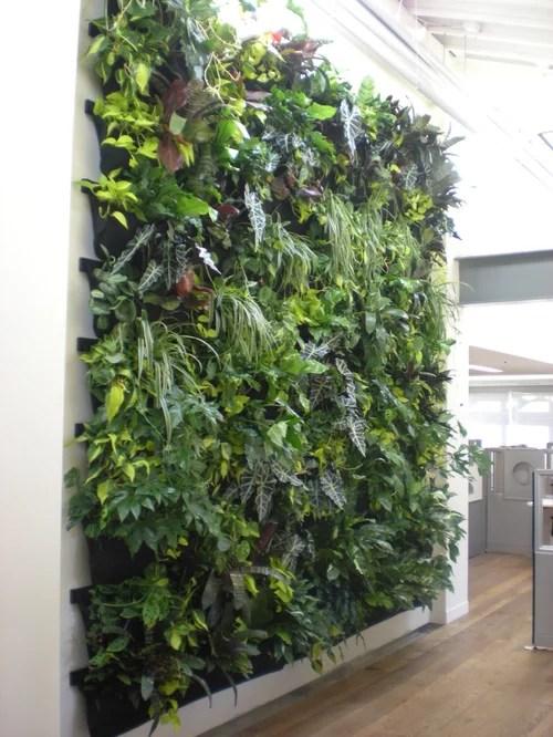 Indoor Vertical Garden Houzz