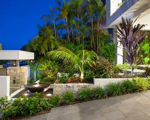 driveway plants home design ideas