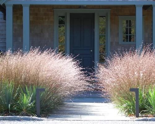 ornamental grass border design